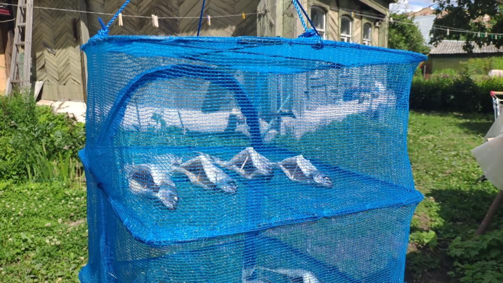 дешевая сушилка сетка для рыбы