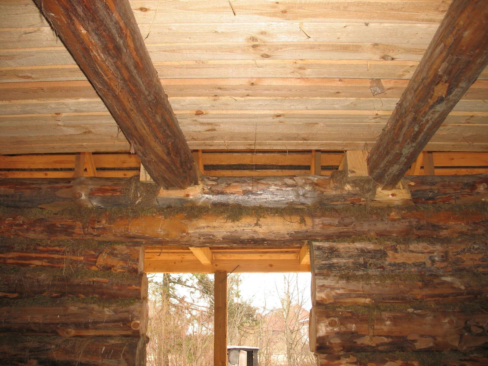 Антисептическая обработка срубов, домов и бань из дерева - фото pic_3da9aa1180a4d32_1920x9000_1.jpg