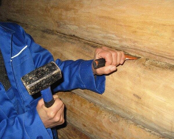 Конопатка или герметик для швов сруба дома из оцилиндрованного бревна? - фото pic_6c72b6adbf8226c_1920x9000_1.jpg