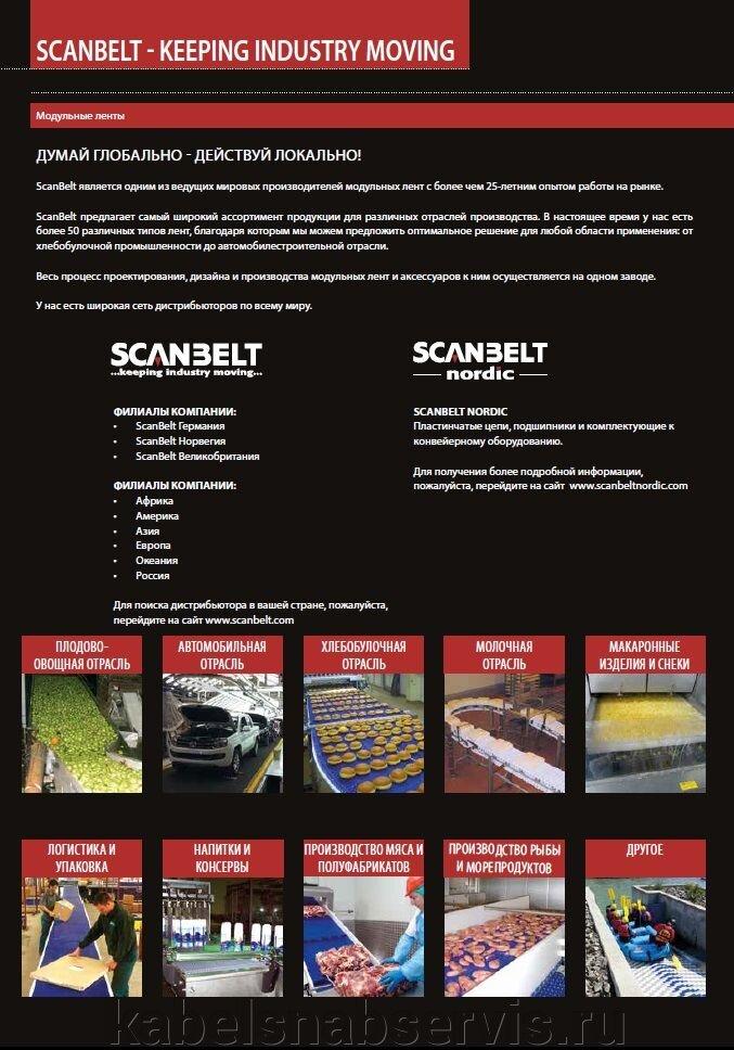 Модульные конвейерные ленты SCANBELT - фото pic_8497bed9e5f57b6_1920x9000_1.jpg