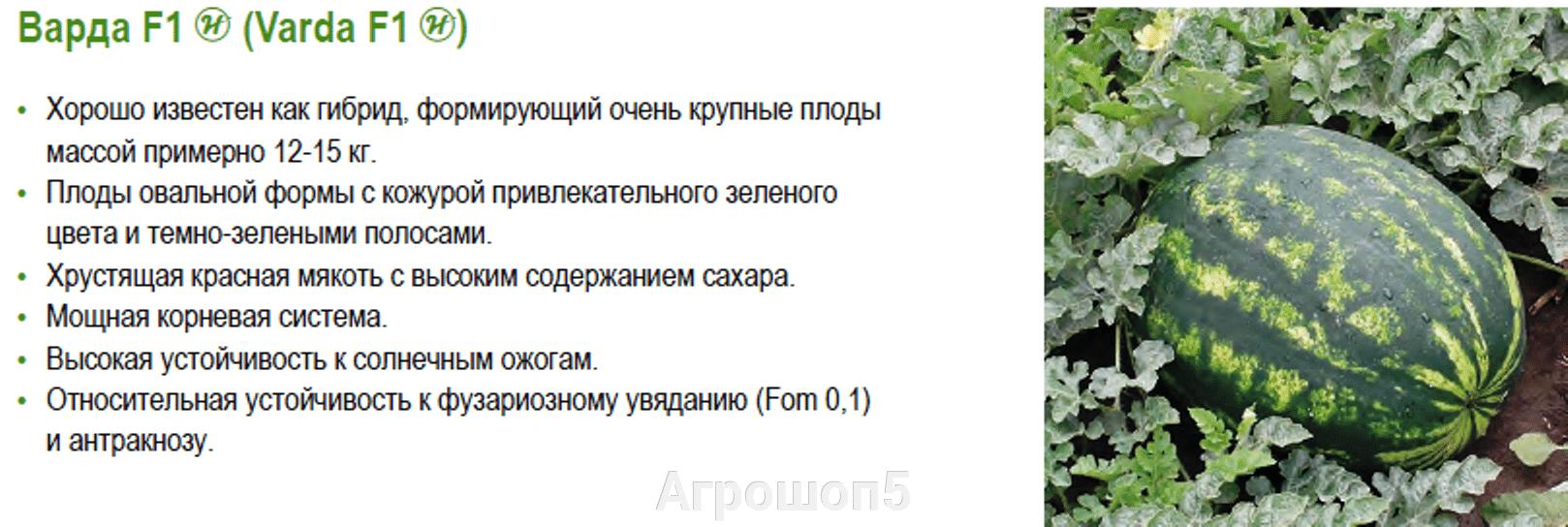 pic_8ff7196c06ff7a8ae240f0db19b138ae_1920x9000_1.png