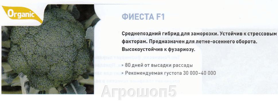 pic_fcab12c5cbcd49872f909cbc086c98de_1920x9000_1.png