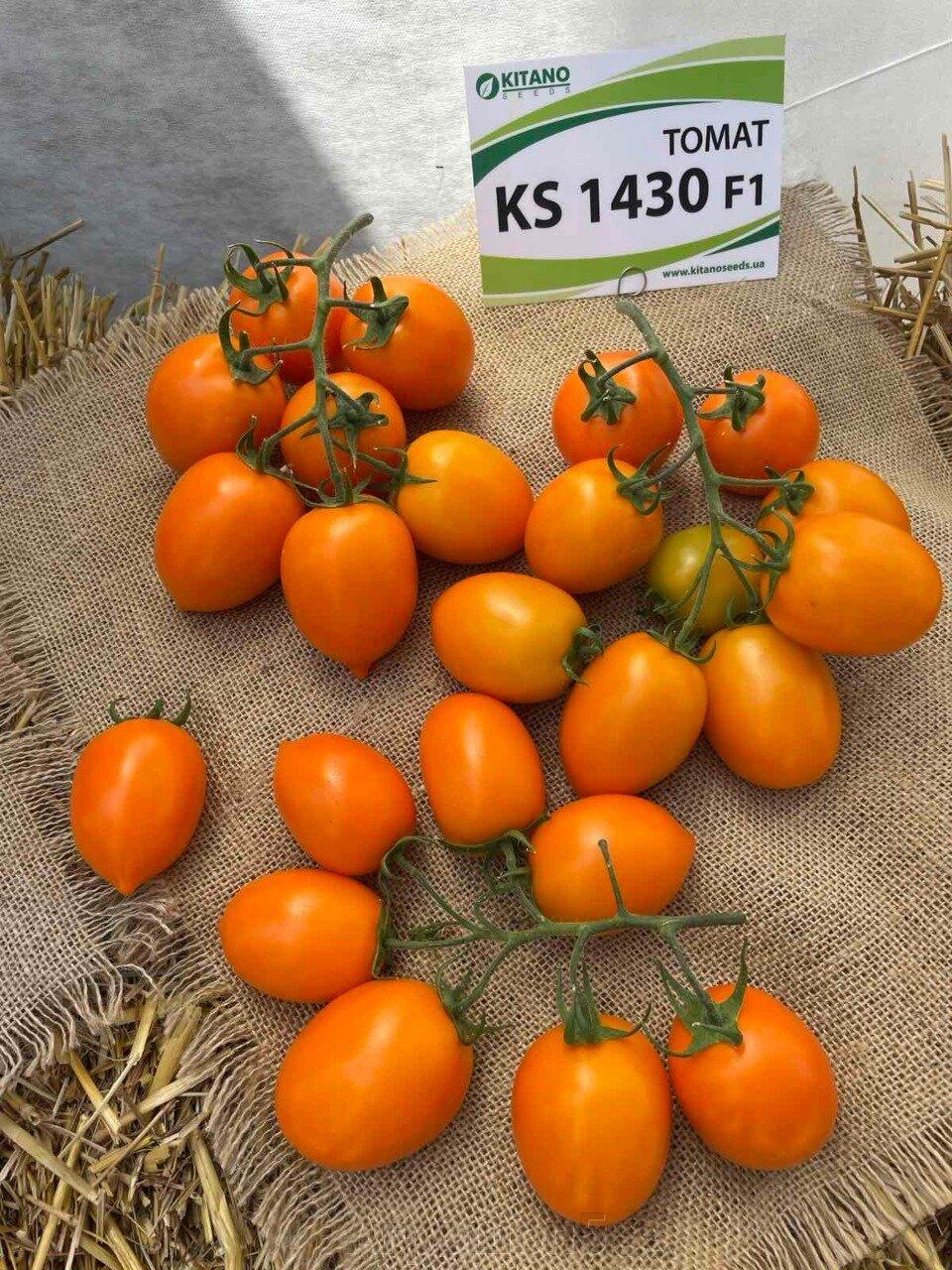 День поля по томатам от компании Kitano - фото pic_dee4213769a0b82dbc11c73d70b4b79b_1920x9000_1.jpg