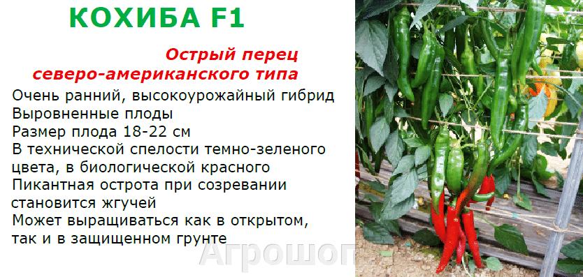 pic_69154fd23dab1fda512851a70cde1a2e_1920x9000_1.png