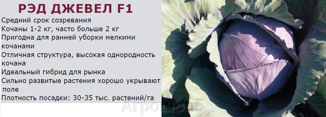 pic_d9c3ef457be23f3ab2b358e45486e4c0_1920x9000_1.png