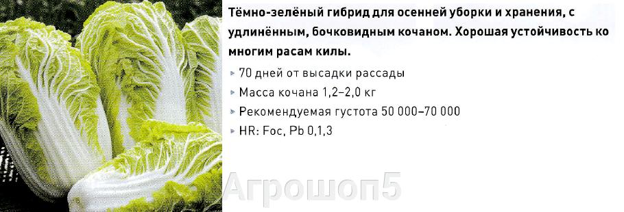 Капуста пекинская Билко F1. 2500 семян. Bejo. Пекинка для закладки на хранение. Устойчива к киле, фузариозу Профупаковка - фото pic_714742a93dc15d815de16f58c16818eb_1920x9000_1.png
