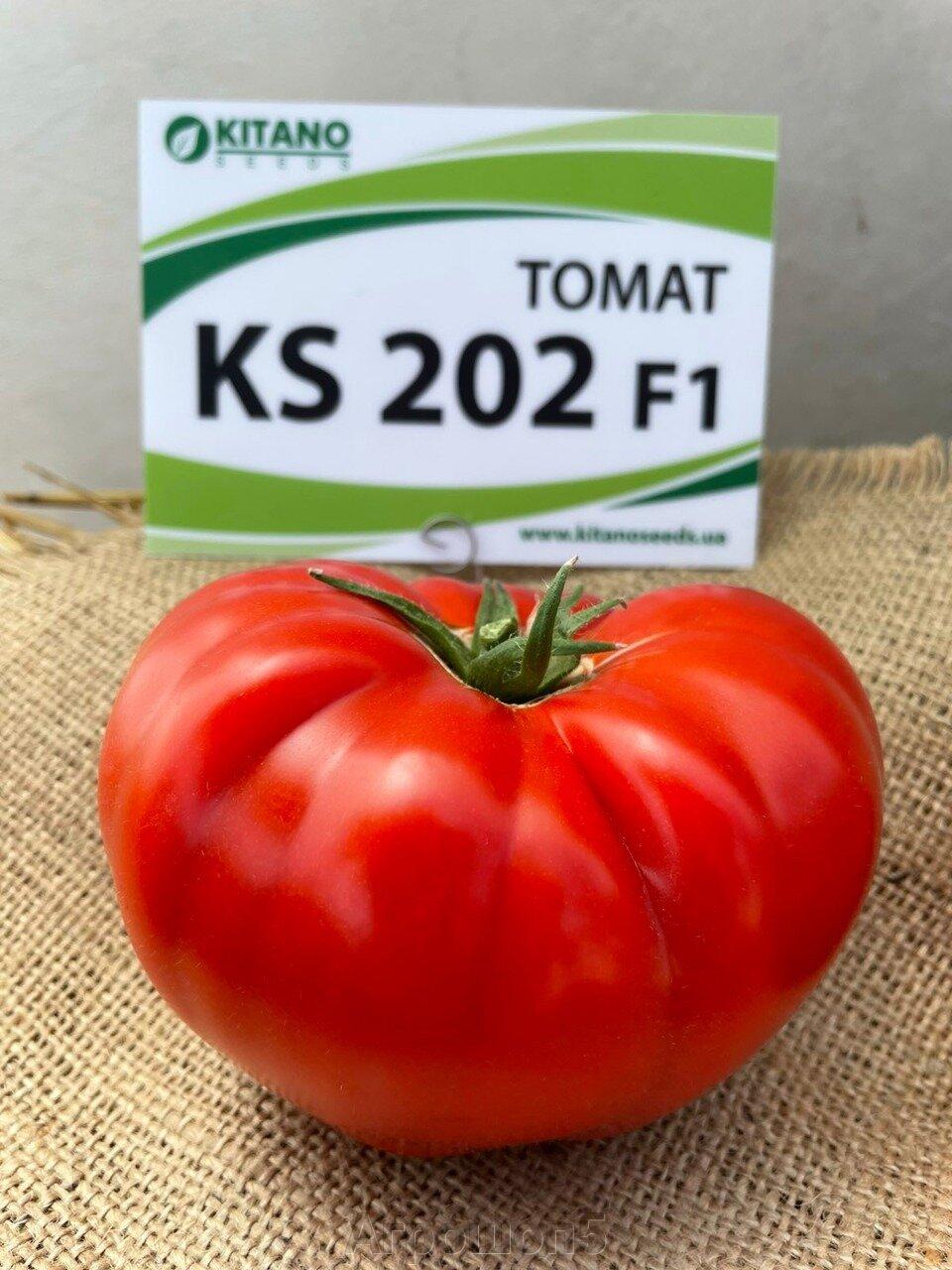 День поля по томатам от компании Kitano - фото pic_8caa8790b8da7f7a8d9cc045fabeef74_1920x9000_1.jpg
