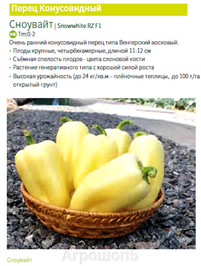 Перец Сноувайт F1. 1000 семян. Rijk Zwaan. Супер ранний урожайный конусовидный сладкий перец венгерского типа. - фото pic_44d1e467111108b412d3e9db4a290679_1920x9000_1.png