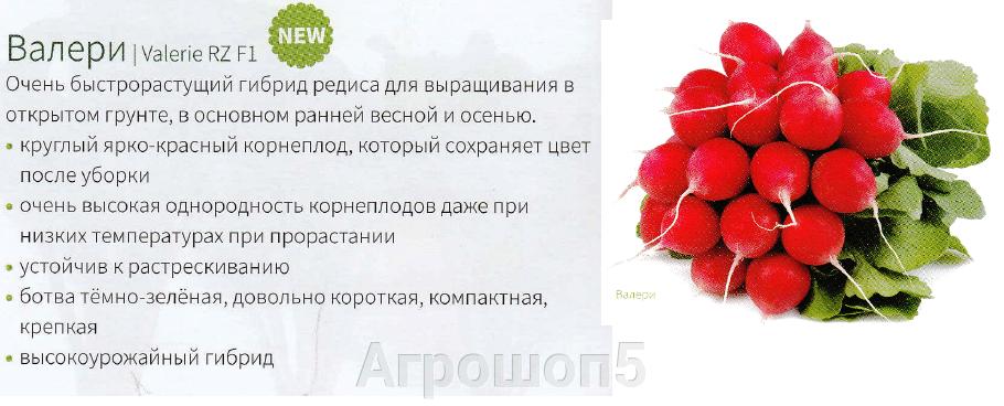 pic_c558ab1e2658706df9630eb05dfe5a1a_1920x9000_1.png