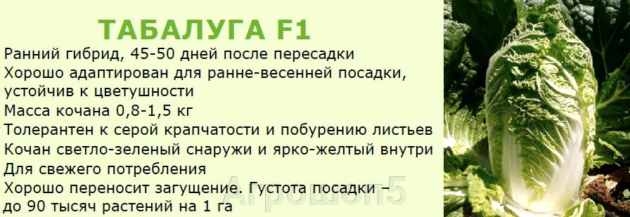 pic_82989c2c518013a7bc9f71cd9a1963ff_1920x9000_1.png