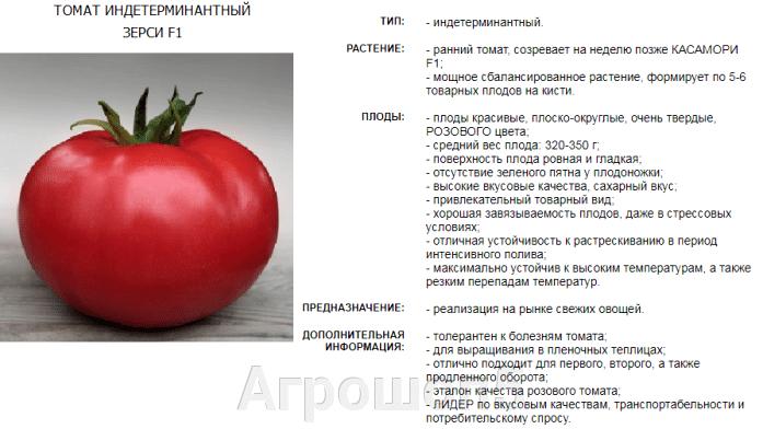 Томат Зерси | Кибо F1. 5 семян. Kitano. Высокорослый ранний розовый урожайный БИФ томат для тепличных условий. - фото pic_312d9625c7a3949b91ec4276977ea76a_1920x9000_1.png