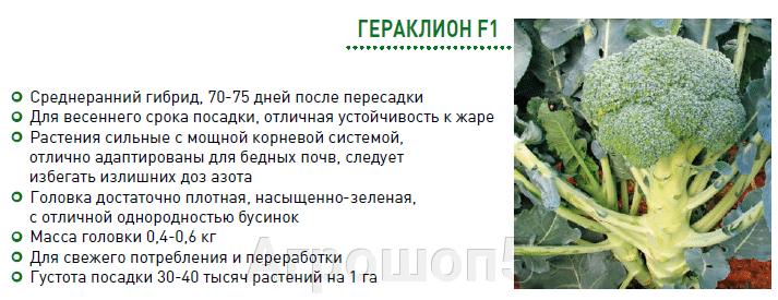 pic_c127265a6f00e03f5417d2e381f105cb_1920x9000_1.png