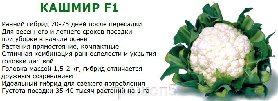 pic_56af275cc12afa749d1f64414df51c36_1920x9000_1.png