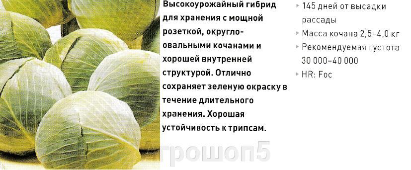 pic_ab65ebcf12d96fa87d6147f46c32880b_1920x9000_1.png