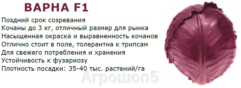 pic_c27c8f4d09b3eafa5f1b1173596e88e3_1920x9000_1.png