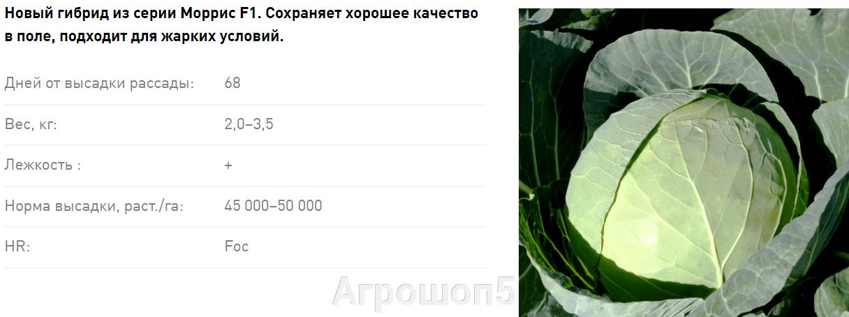 pic_336cf4b5b5921ed9c42127e8153a8c36_1920x9000_1.png
