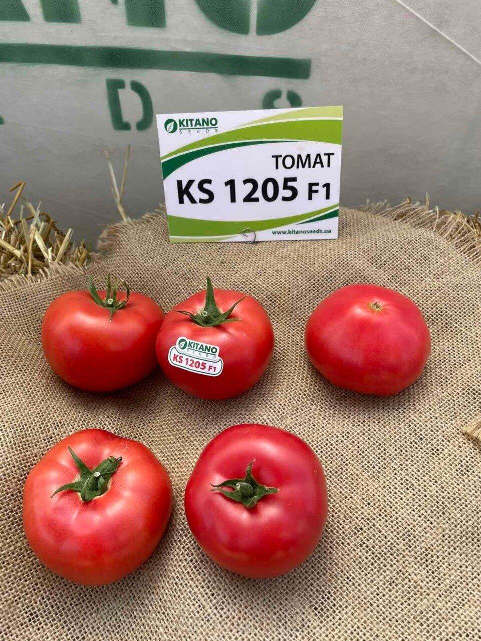 День поля по томатам от компании Kitano - фото pic_e12719e4e5100e3d788ca76351f0c470_1920x9000_1.jpg