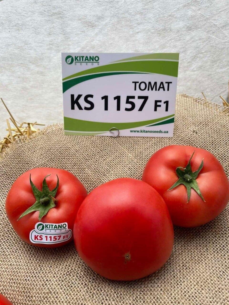 День поля по томатам от компании Kitano - фото pic_325864eb8c93e16c788c85d53a103e95_1920x9000_1.jpg