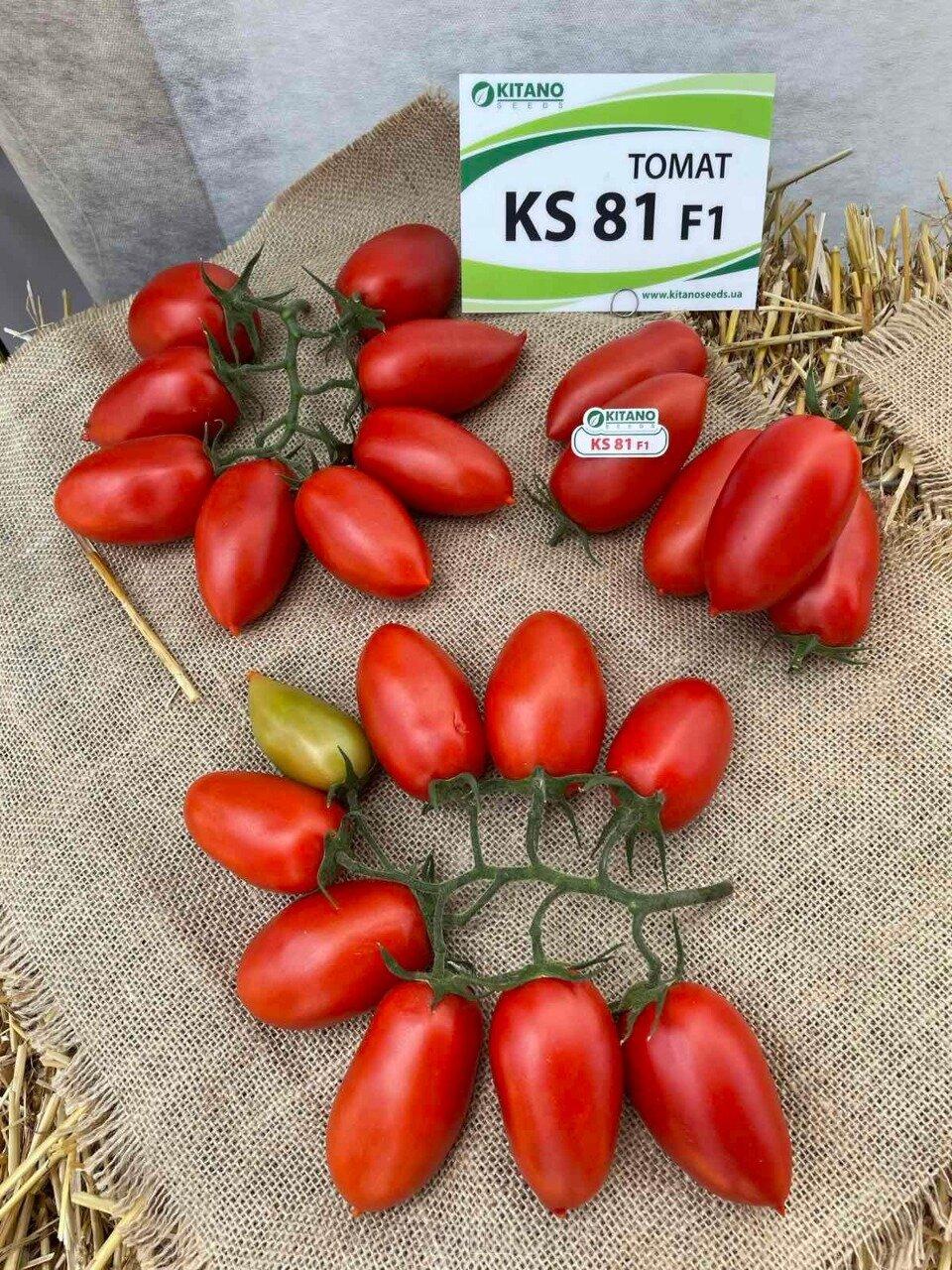 День поля по томатам от компании Kitano - фото pic_2eb27edd4f8de8d7be883cc3ed3fef8b_1920x9000_1.jpg