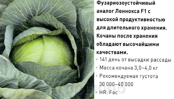 pic_94fcbeda24c6fe98eefe768d37d4c64b_1920x9000_1.png