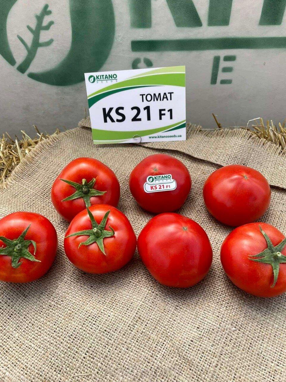 День поля по томатам от компании Kitano - фото pic_eb92f24413a47ac5007a9cda861e9f08_1920x9000_1.jpg