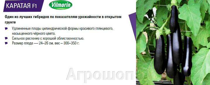 pic_8eede3ef524665218437ea273b942d76_1920x9000_1.png