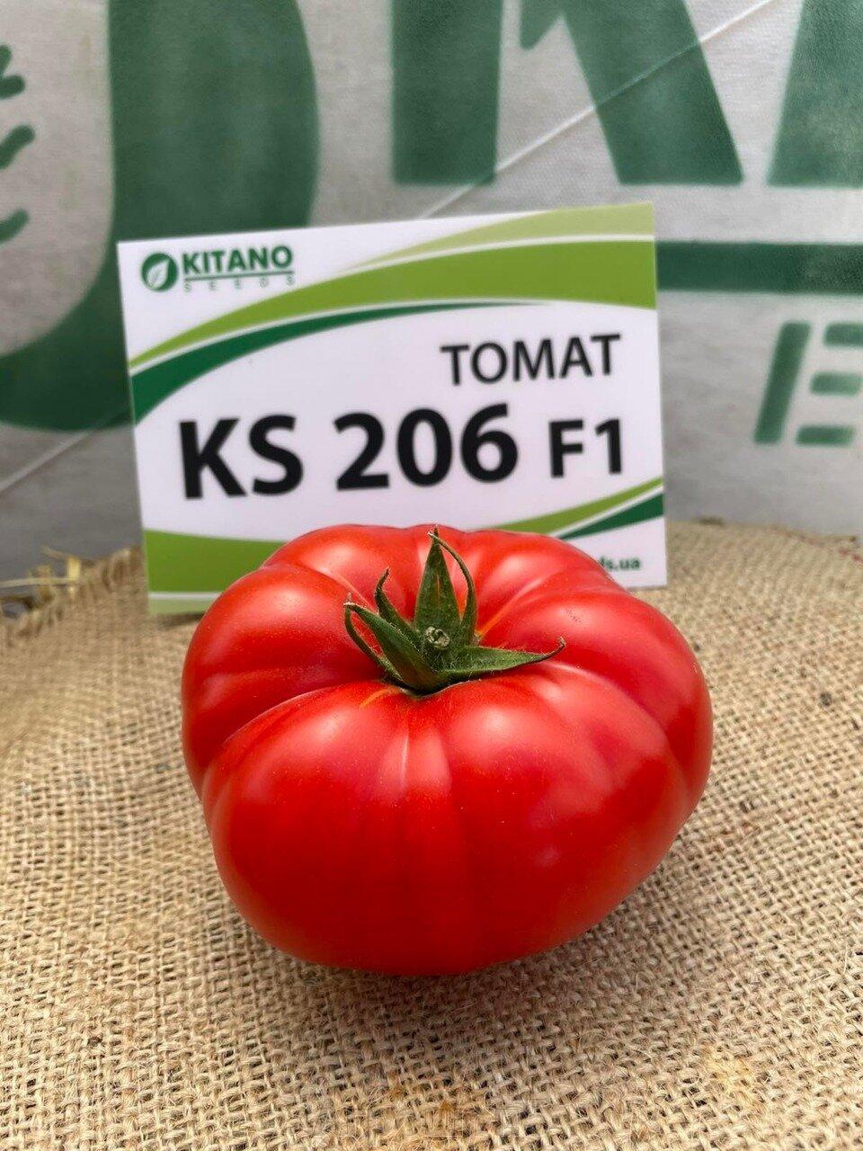 День поля по томатам от компании Kitano - фото pic_d352c3142366d0b1e66e15ce625778aa_1920x9000_1.jpg