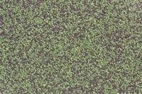 Композитная металлочерепица Grand Line Classic 1 волновый мятный мокко - фото pic_5560ab5b71b57c7_700x3000_1.jpg
