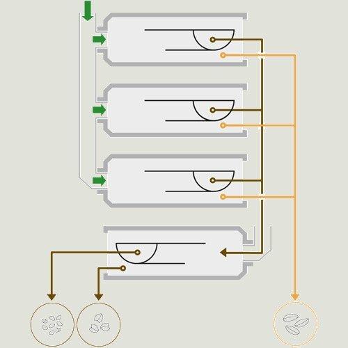 Триеры ZRкомпанииPETKUS - фото Триерные блоки ZP Petkus