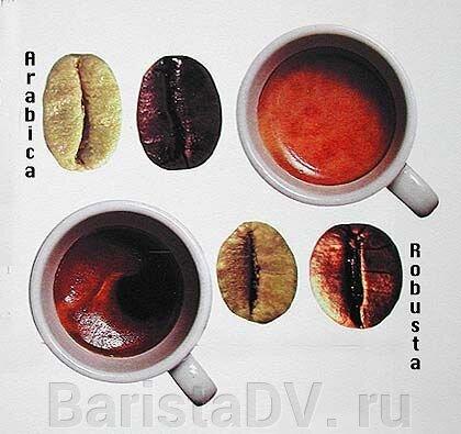 30 интересных фактов о кофе - фото pic_92ea952debf7e23_700x3000_1.jpg