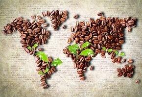 Чем отличается кофе из разных стран. - фото pic_b2fe68dc27e20de_700x3000_1.jpg