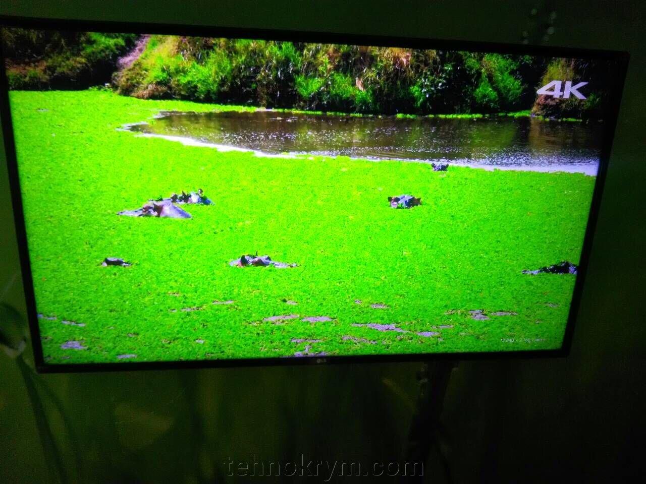 Доставка телевизора LG 49UJ630V в Севастополь - фото pic_a447f00e7d9401e_1920x9000_1.jpg