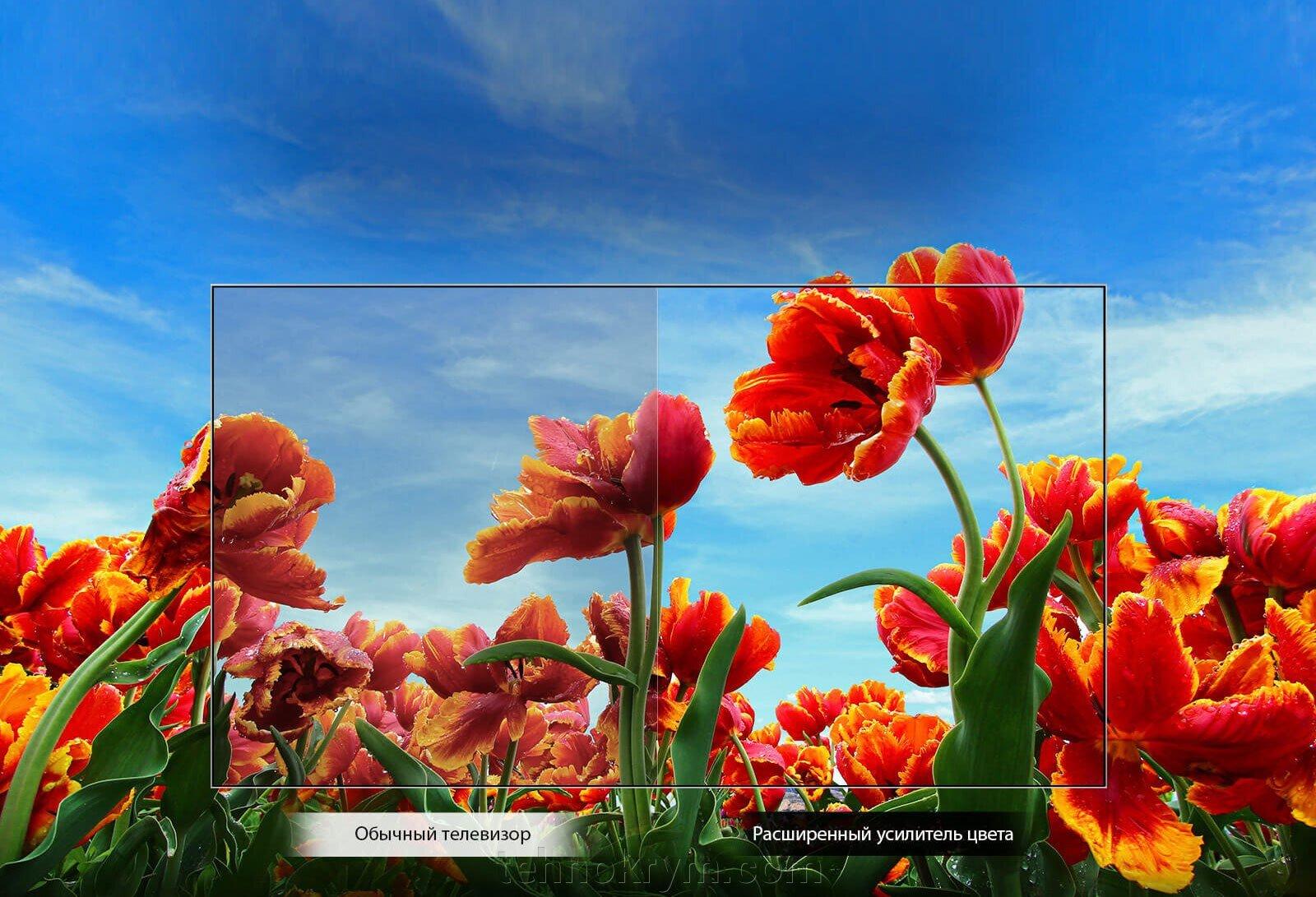 Телевизор LG 32LM550BPLB со встроенным тюнером Т2 - фото pic_9e9d93d888c4c0e4a1a4a6796e1666fa_1920x9000_1.jpg