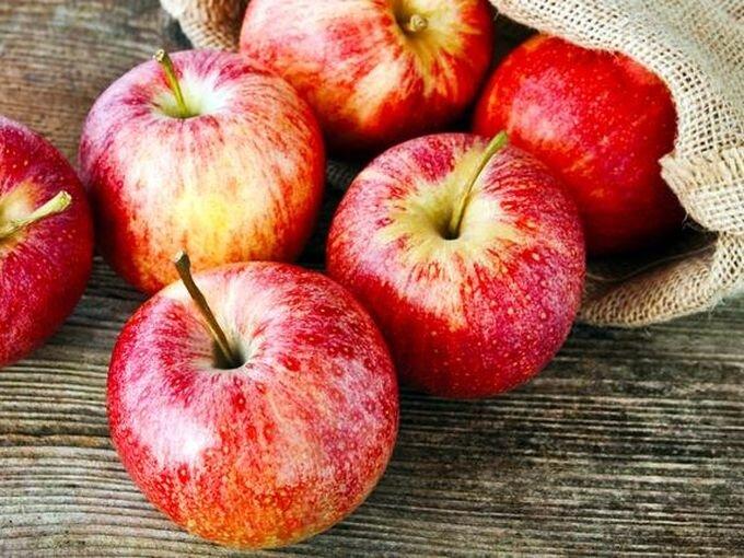 Яблоня трехсортовая