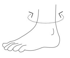Область измерений при подборе ортеза на голеностоп Orlett DAN201