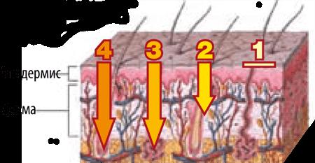 Картинки по запросу гиалуроновый крем png
