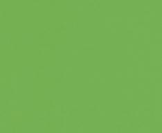 Радиусный шкаф-купе М. лайн-6 - фото яблоко глянец 3088