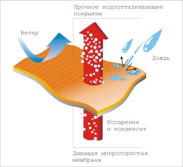 Паропроницаемая мембрана - пропускает пар в обоих направлениях, а влагу только в одном