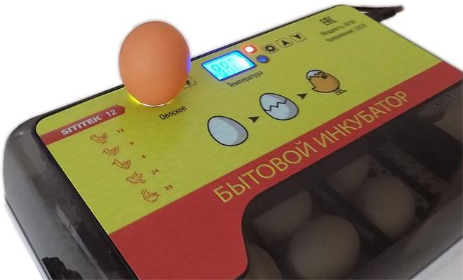 Овоскоп позволит вам быстро проверять яйца на просвет перед закладкой