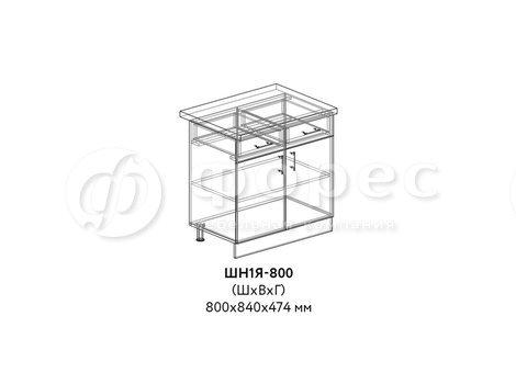 ШН1Я-800
