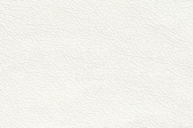 Техсервис варианты обивки - фото BOSCO01.jpg