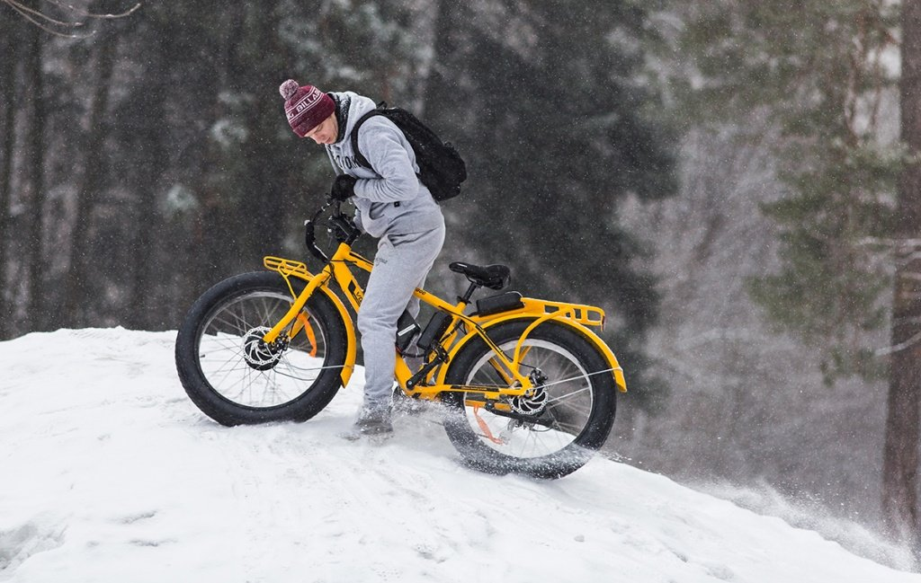 Электровелосипед BigCat Dual 1000 - фото 15 (1).jpg