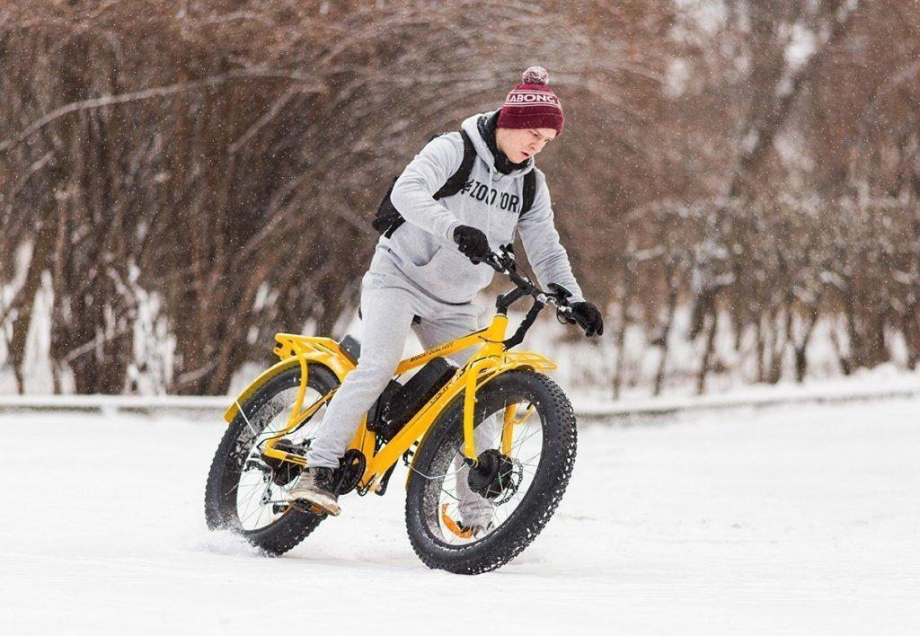 Электровелосипед BigCat Dual 1000 - фото 17 (1).jpg