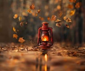 Краски осени - фото Image by Fred