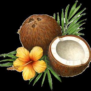 OvisOlio ® Овечье Масло Спермацетовый крем для лица 44g - фото Похожее изображение