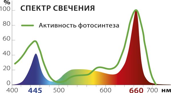Фитосветильник «РАСТУЩИЙ светильник 16 Вт» - фото спектр-сайт.jpg