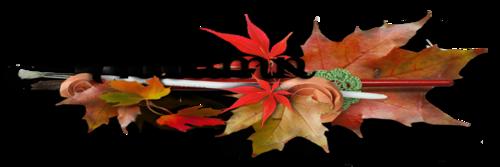 Краски осени - фото voabpp285h4.png